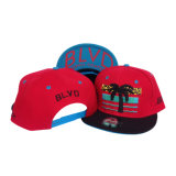 Form Custom 3D Embroidery Snapback Baseball Hat