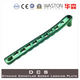 DCS-dynamische Condylar selbstsichernde Platte