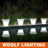 16 colori hanno cambiato l'indicatore luminoso ricaricabile del POT del POT di fiore del LED LED, POT chiaro del LED