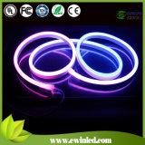 Lumière au Néon de Câble de RVB avec CE&RoHS 1-2 Ans de Garantie (EW-NF-80-4RGB)