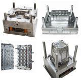 Плашки Staping металла/прессформа от поставщика Китая