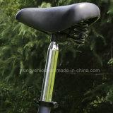 大人(ES-1202)のための電気スクーターを折る12インチ36V 300W