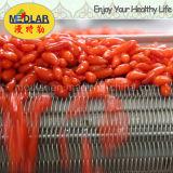 Cuidado de la piel de níspero Chinese Wolfberry