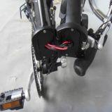 E-Bicicleta de aluminio del marco del nuevo certificado del TUV (JSL039X)