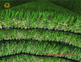 Multi Color Artificial Grass für The Decoration der Leisure Plätze