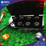 Étalage acrylique de fard à paupières de noir de la qualité Ygl-95