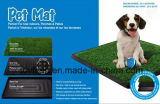 Hundetoiletten-bewegliches Tellersegment-Toiletten-Haustier Potty