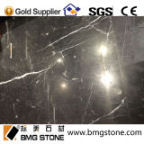 Competitive Price를 가진 높은 Quality Nero Margiua Black Marble