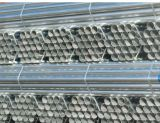 Pipa de acero de ms Black del andamio BS1139/tubo