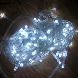 cadena de hadas popular de la estrella de los 30m 300LEDs LED de días de fiesta de la Navidad