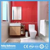Ofício de vidro da mobília moderna do banheiro do MDF da madeira com gabinete de armazenamento (BF140D)