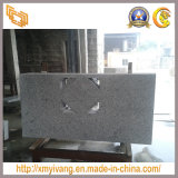 Дешевое Daotian White Granite Slab для Countertop Vanity Top (G655)