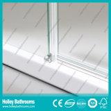 Portes de verre dépoli de porte de Hinger doubles vendant l'aluminium simple Shower-Se710m de matériel d'acier inoxydable