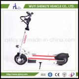 良質の工場価格の高品質600Wの電気スクーター