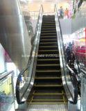 Escalator van uitstekende kwaliteit met een Big Angle