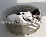 أثاث لازم خارجيّة داخليّ أثاث لازم كلب سرير محبوب سرير ([يتإكس191])