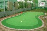 Migliore tappeto erboso sintetico di paesaggio di qualità