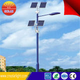 Supplier professionale Solar PV LED Street Light 30W