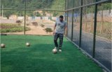 Tappeto erboso artificiale di calcio dell'erba sintetica di gioco del calcio