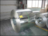 Coil d'acciaio Type e Coated Surface Treatment Steel Coils