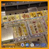 Модель Changsha города гавани/модель блока/изготовление многоквартирного дома модельное/все добросердечные знаки Fo