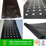 Manafacture Direct Supply Black LDPE Film mit Hole