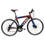 고품질 자전거를 경주하는 단 하나 속도 형식