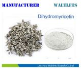 Polvere Cany naturale pura dell'estratto del tè di bianco 98% Dihydromyricetin dei prodotti