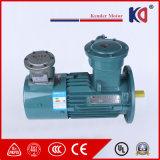 Motor de CA eléctrico de la conversión de frecuencia con poder más elevado