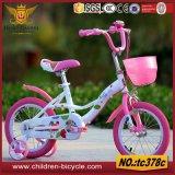 com a cesta plástica para a bicicleta da criança/bicicleta dos miúdos/bicicleta dos esportes mini para brinquedos do bebê