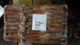 Círculo inteiro do calamar vermelho indonésio Frozen