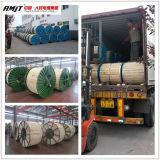 AAAC Leiter-Fabrik in Henan