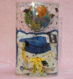 Caisse d'emballage de décoration de cadeau de Noël d'OEM (PVC rond de cadre)