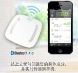 Bluetooth Personal Scale를 위한 17 바디 Composition Parameter