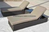 Mobilia del rattan - salotto del Chaise di svago