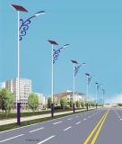 9m LED Solarstraßenlaternemit Cer-Bescheinigung