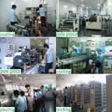 Über 2000 Solar Energy Batterie der Zeit-12V 30ah des Speicher-LiFePO4