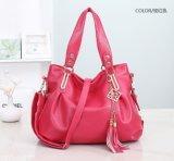 공장 Designer Leather Handbags (LD-1512) 싼 Pricediamond 누비이불 및 리베트 숙녀