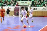 Pavimentazione della corte di Futsal dello standard internazionale per la concorrenza ad alto livello e l'uso dilettante (bronzo dell'argento dell'oro di Futsal-)
