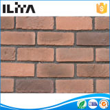 Matériau de construction en pierre cultivé artificiel de brique décorative de mur (10077)