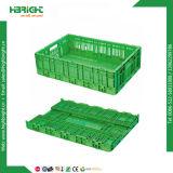 Casse di verdure pieghevoli di plastica degli scomparti di plastica di giro d'affari