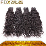 Bagnare e Wavy Human Hair Weave Fdx Best Hair Accessories