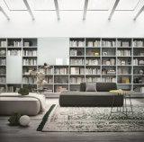 Sofà sezionale del tessuto molle del salone per la mobilia domestica di uso (FS-003)