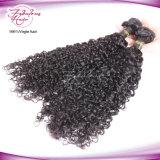 Uitbreidingen van het Menselijke Haar van de Weefsels Remy van 100% de Maagdelijke Peruviaanse Krullende