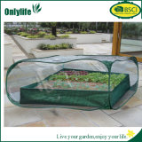 Serre van de Tuin van pvc van Onlylife Pop-up Mini