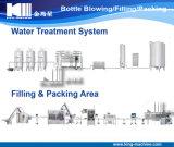 Terminar a linha de engarrafamento mineral da água bebendo