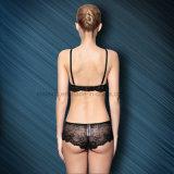 Las señoras inconsútiles del diseño europeo empujan hacia arriba el sujetador y Panty