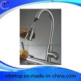 Одиночные сбереженияа воды Faucet для ливня руки кухни