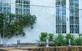 현대 디자인 정원 유리제 담/스테인리스 마개 유리제 방책