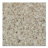 New Style Quartz Stone (QR109)